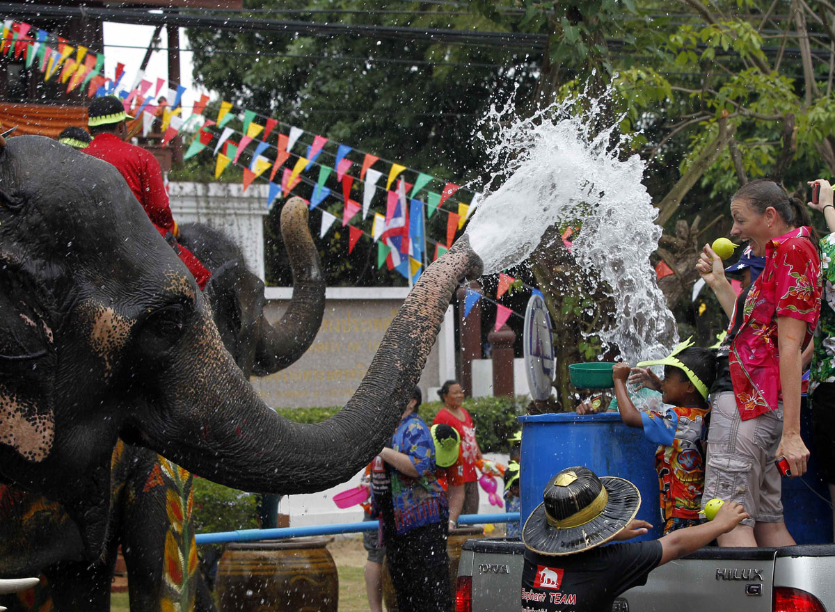 Elephants spray water at tourists in celebration of the Songkran water festival in Thailand's Ayutthaya province
